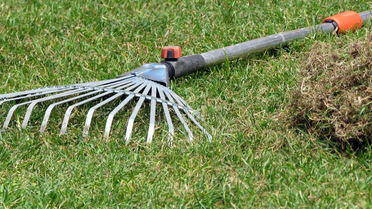 Rasen kompostieren - Zusammen geharktes Gras